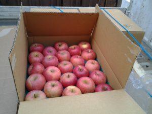 りんご到着